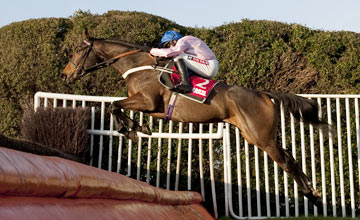 Can Captain Conan pounce in Sprinter Sacre's absence?