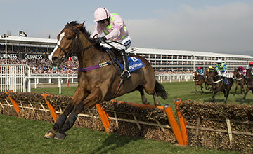 Faugheen the machine