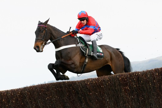 Can Sprinter Sacre come back to regain the crown?